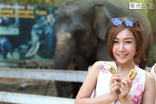 大象餵食03.jpg