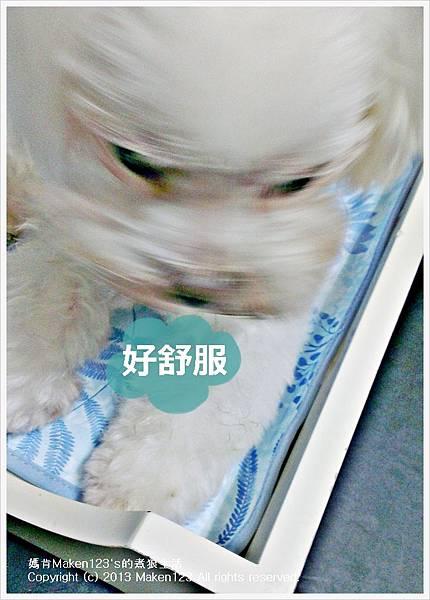 IMG_20130524_141857