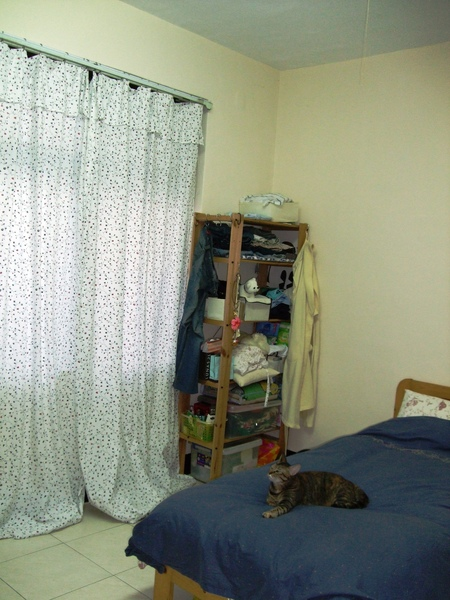 改造後的窗簾 和改造前的床邊.JPG