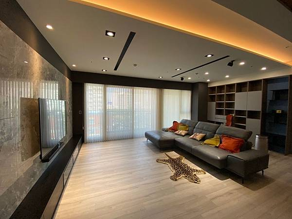 新家規劃 客廳落地窗簾 蛇行簾 柔紗簾 客廳窗簾推薦 (10)
