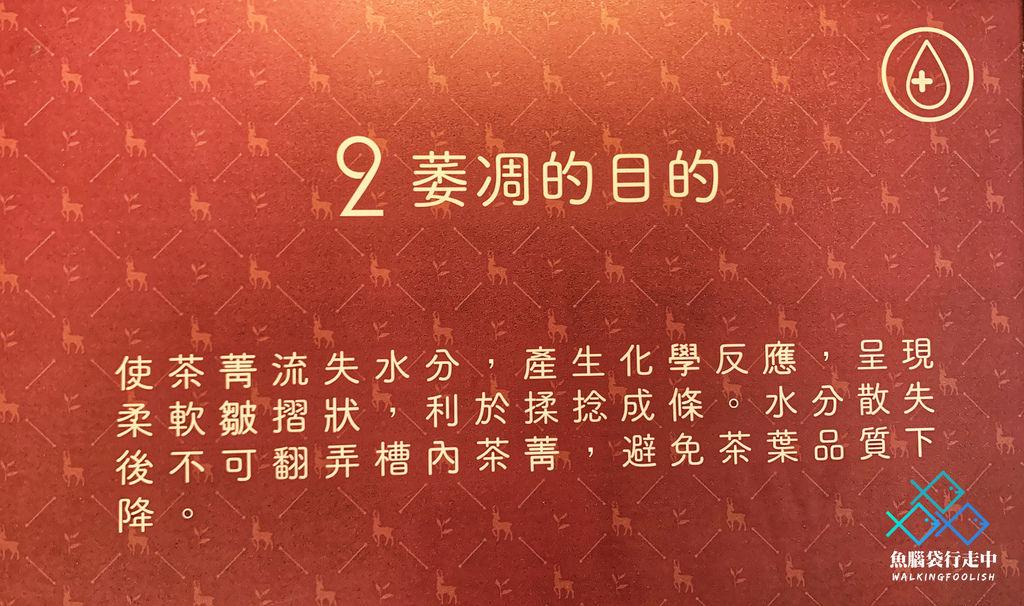 魚腦袋行走中_南投景點_喝喝茶 (18).jpg