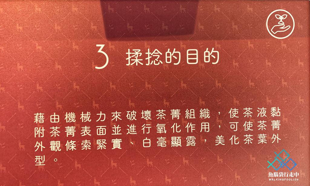 魚腦袋行走中_南投景點_喝喝茶 (19).jpg