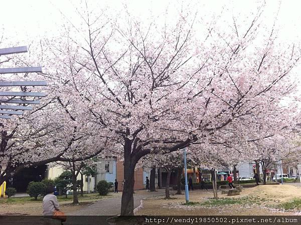 島津公園 (3)