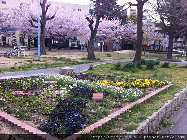 島津公園 (8)