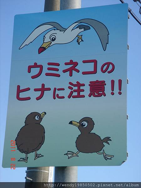 稚內-利尻島 (86)