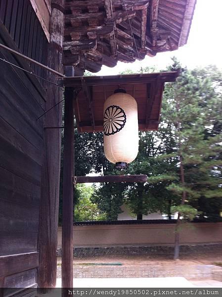 奈良公園 東大寺 (3)