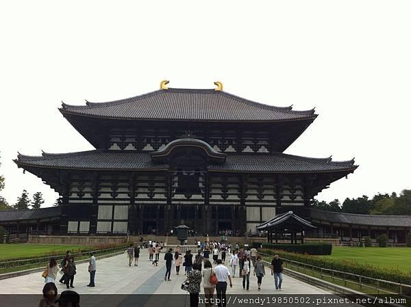 奈良公園 東大寺 (7)