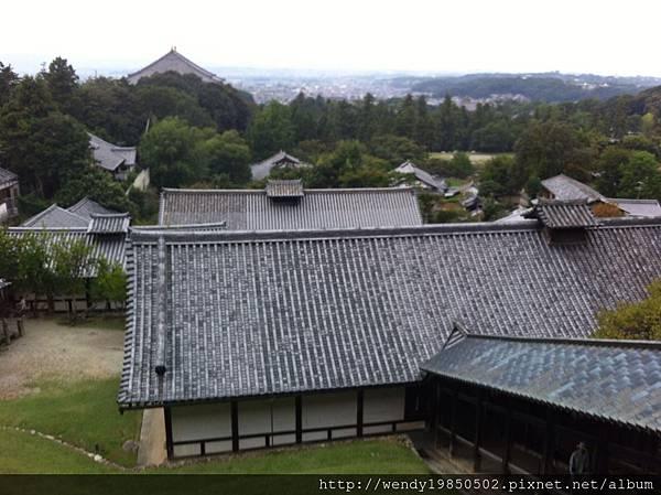 奈良公園 東大寺 (25)