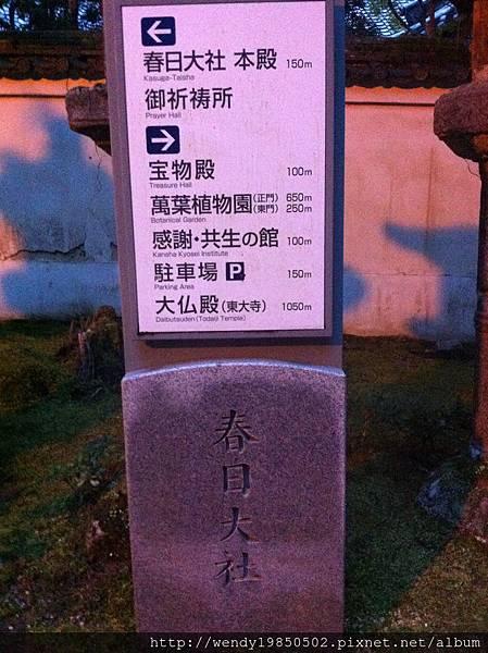 奈良公園 東大寺 (28)