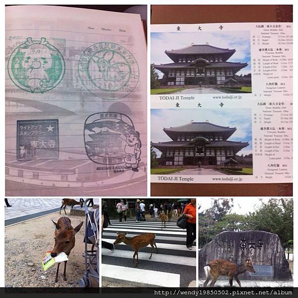 奈良公園 東大寺 (34)