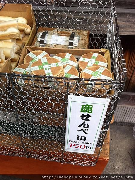 奈良公園 東大寺 (54)