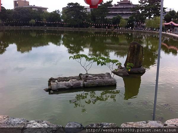奈良公園 東大寺 (55)