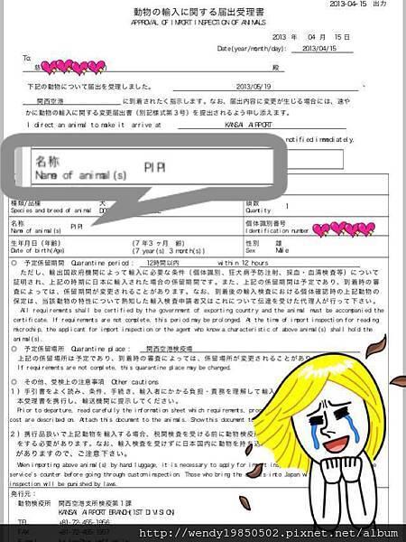 狗狗輸入日本許可通知