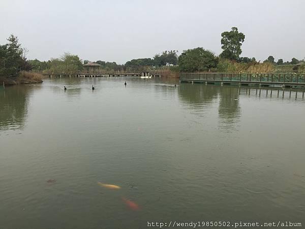 太湖濕地公園