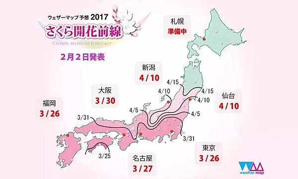 2017日本櫻花!從伊豆河津櫻綻放!
