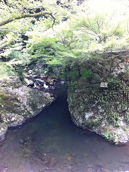 箕面滝 (4).jpg