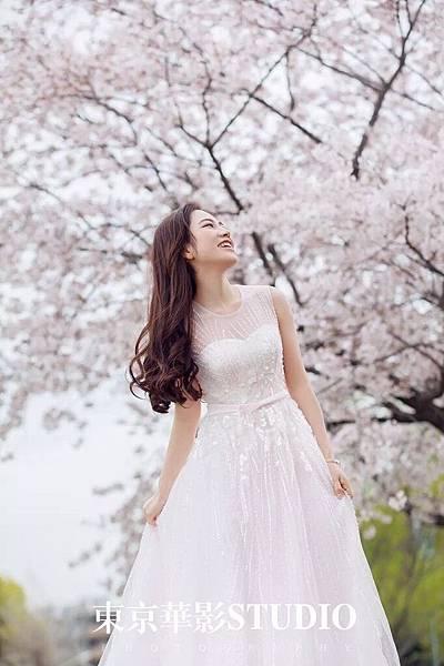 櫻花.jpg