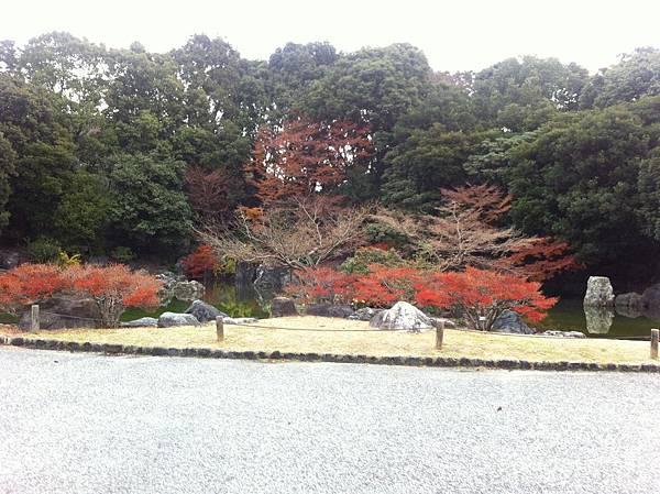万博記念公園 (12).jpg