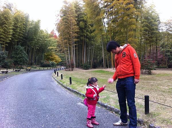 万博記念公園 (13).jpg