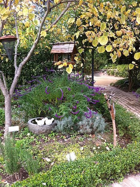 英国風ナチュラル庭園 (8).jpg