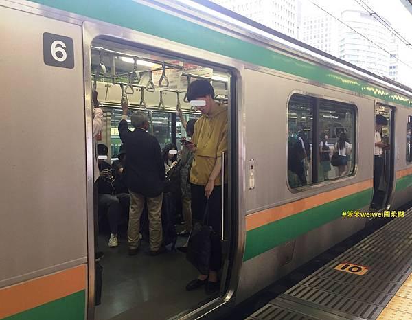 綠色車廂 (3).JPG