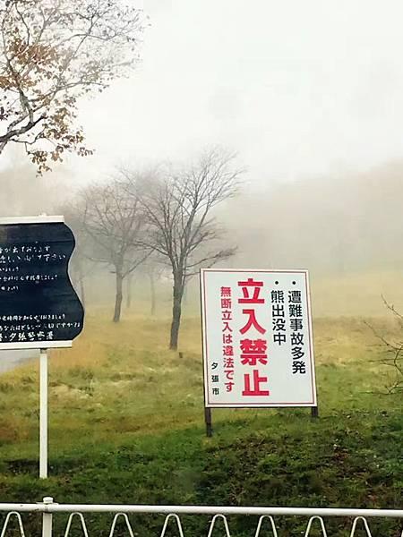 夕張紅葉 (7).JPG