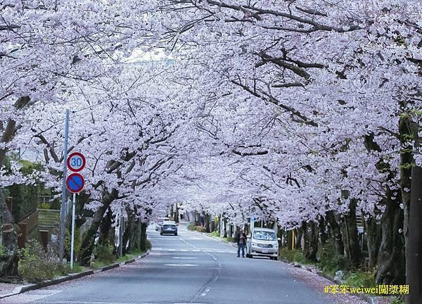 鎌倉 (1).jpg