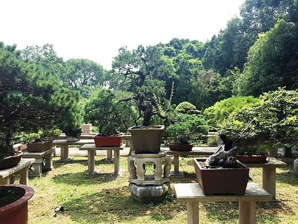 萬景山莊 (5).JPG
