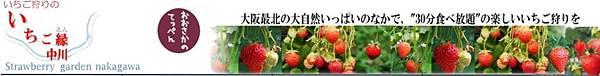 いちご縁中川 いちご狩り.jpg