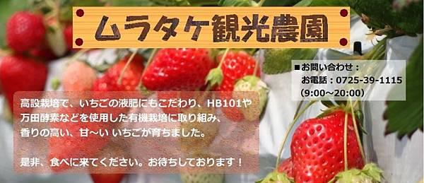 遊農園ムラタケ いちご狩り.jpg
