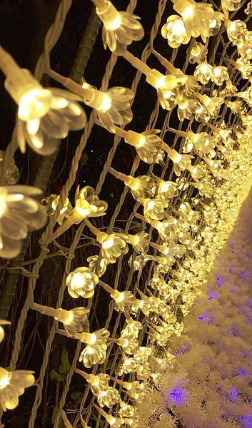 光之回廊 (1).PNG