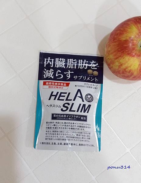 HELA-1.jpg