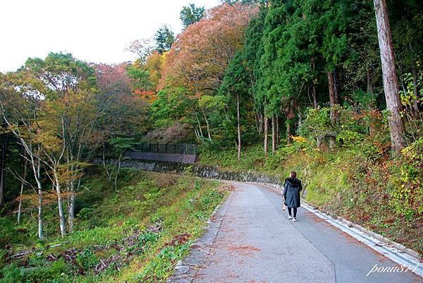 sirakawa-2.jpg