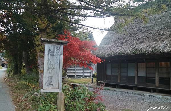 sirakawa-9.jpg
