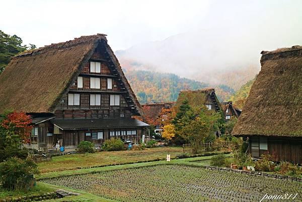 sirakawa-35.jpg