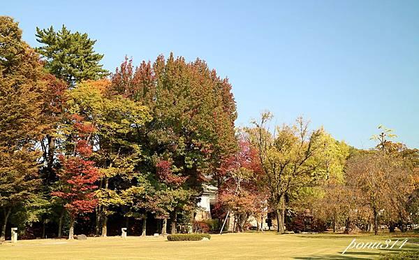 kyoto-5.jpg