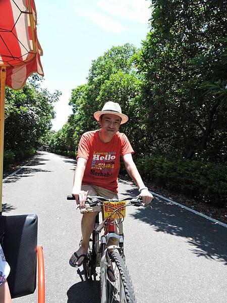 新屋騎腳踏車15