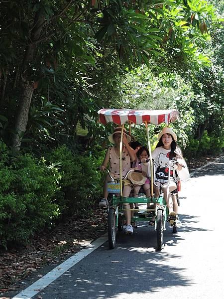 新屋騎腳踏車4