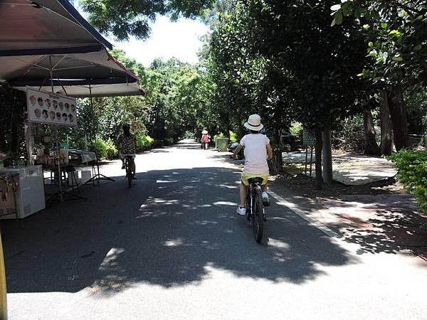 新屋騎腳踏車5