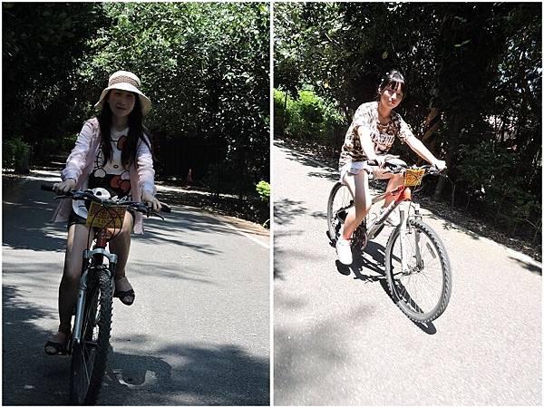 新屋騎腳踏車25