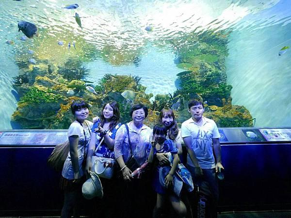 2015花蓮員工旅遊-海洋公園17