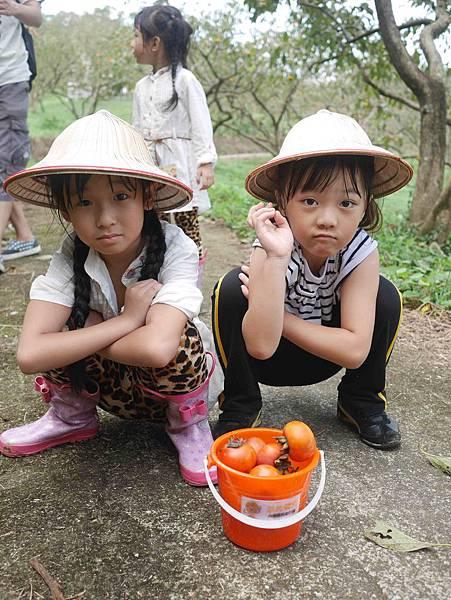 小小柿農11