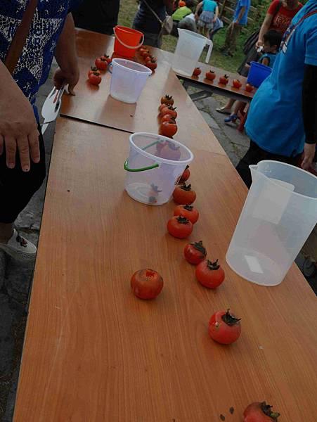 小小柿農37