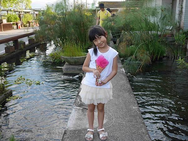 勝洋水草12
