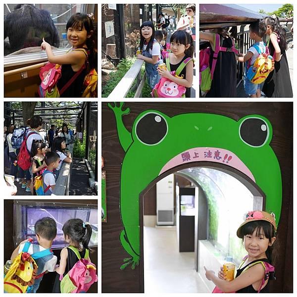 北海道day2-旭川動物園13