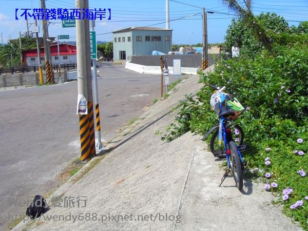 20090804向日葵到通霄32_nEO_IMG.jpg