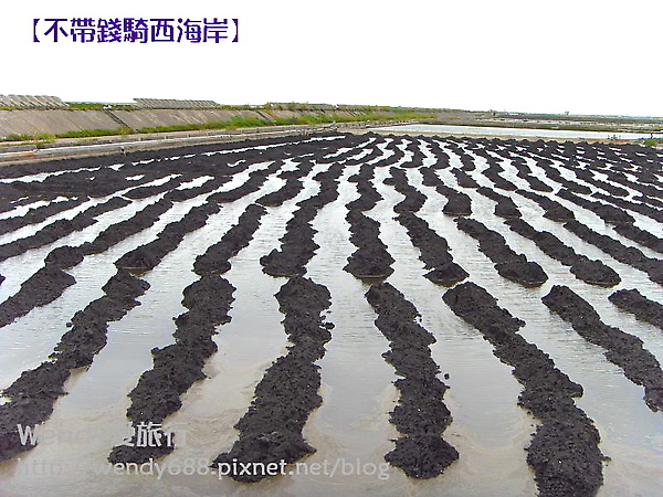 20090806梧棲到芳苑鄉81.jpg