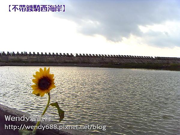 20090806梧棲到芳苑鄉85.jpg
