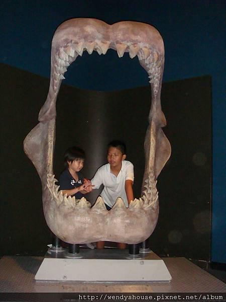 海洋公園2011.08.13-22.JPG