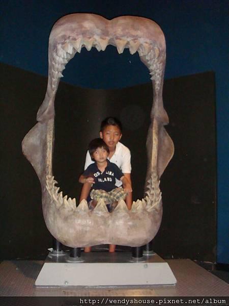海洋公園2011.08.13-23.JPG